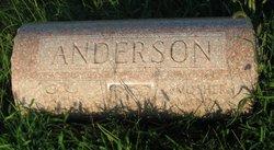 Amanda L Anderson