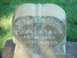 Elvin Adams
