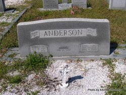Elizabeth <i>Cribbs</i> Anderson