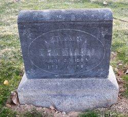 Arthur L Freeman