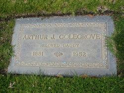 Arthur James Colegrove