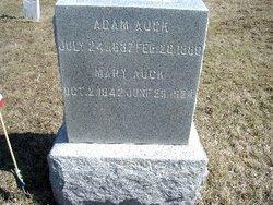 Adam Auck