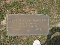 Dexter Clay Harness