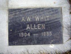 Abraham Whitner Allen