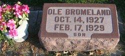 Ole Bromeland, III