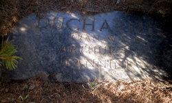 Arthur E. Ducharme