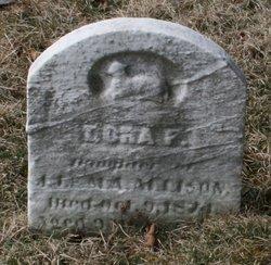 Dora F. Allison