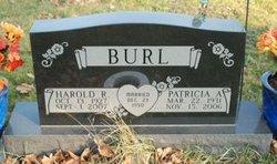 Harold R Burl