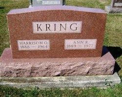 Ann R Kring