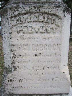 Elizabeth <i>Prevost</i> Babcock