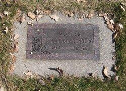 Clifford H Bredenberg