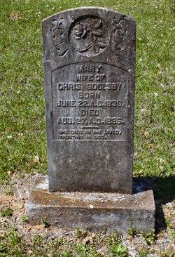 Mary Ann C <i>Long</i> Goolsby