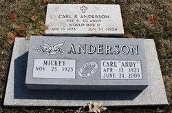 Carl R Anderson