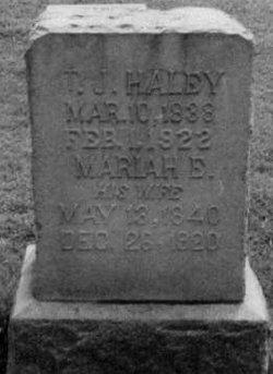 Thomas J Haley