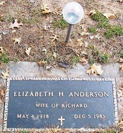 Elizabeth H Anderson