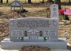 Julia Madell <i>Brown</i> Blue
