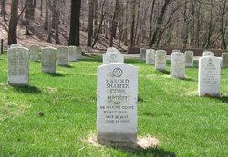 Sgt Harold Shaffer Cobb