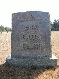 Sarah Ann <i>Burks</i> Burris