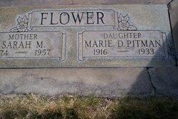 Sarah Manora <i>Barrick-Hanger</i> Flower