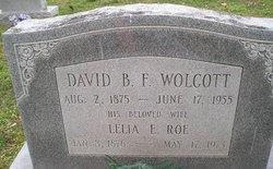 David B F Wolcott