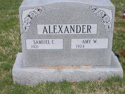 Amy W Alexander