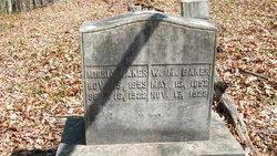 Elmira Victoria <i>Cox</i> Baker