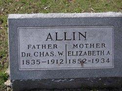 Elizabeth A. Allin