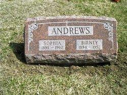 Sophia Andrews