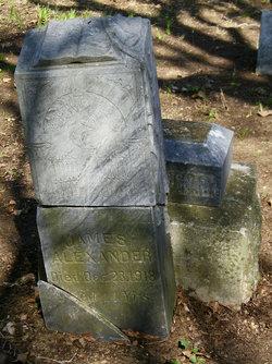 Rev James Alexander