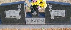 Elsie Ahgoom