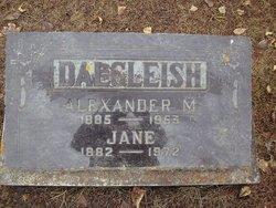 Alexander M. Dalgleish