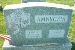 Olga A <i>Rinshaw</i> Ambrosia