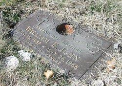 William Edgar Little Willie John