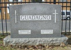 Antoinette <i>Ferrera</i> Guadagno