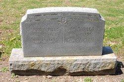 Joseph R Joe Bills