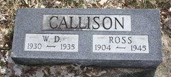 Warren Dean Callison