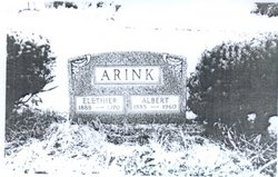 Albert Arink