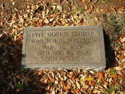 Lyll <i>Morris</i> Blumer