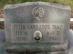 Julia <i>Labrador</i> Diaz