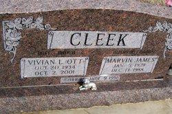Vivian Louise <i>Ott</i> Cleek