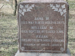 Anna M Andrew