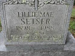 Lillie Mae <i>Smith</i> Setser