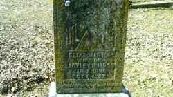 Eliza Jane <i>Martin</i> Moss