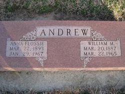 William M Andrew