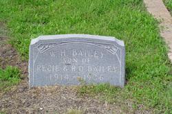 W H Bailey