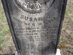 Susan C Cole