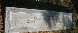 Nell Alexander