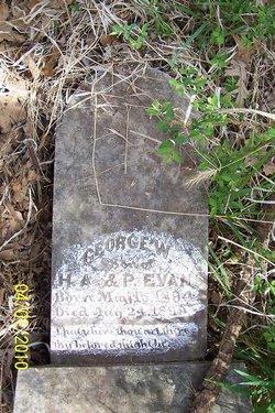 George W. Evans