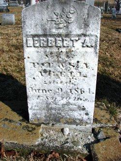 Herbert A Abell