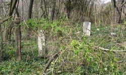 Christian Strole Family Graveyard